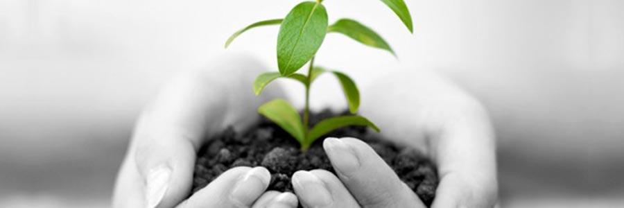 menuiserie-lambert-environnement